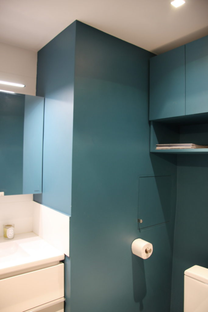 Nonjetable-Petrol-Blue-Toilet-with-Custom-Wall-Cupboard